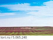 Сельский пейзаж. Всходы озимых, фото № 5065240, снято 4 сентября 2013 г. (c) Вадим Орлов / Фотобанк Лори