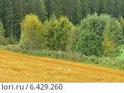 Сельский пейзаж, фото № 6429260, снято 29 августа 2014 г. (c) Валерия Попова / Фотобанк Лори