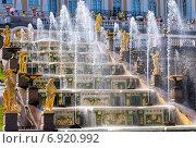 Большой Каскадный фонтан в Петергофе, Санкт-Петербург, Россия, фото № 6920992, снято 23 января 2015 г. (c) FotograFF / Фотобанк Лори