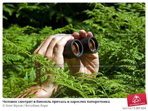 podglyadel-za-devushkoy-v-kustah