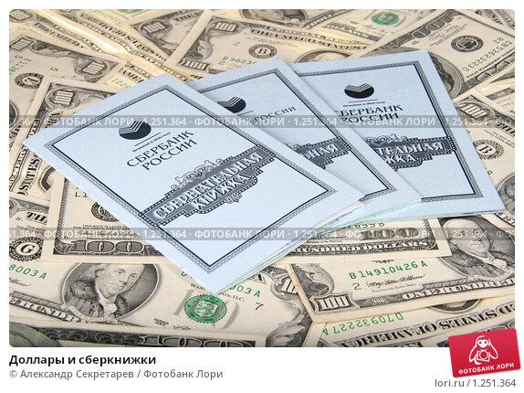 dollary-i-sberknizhki-0001251364-preview