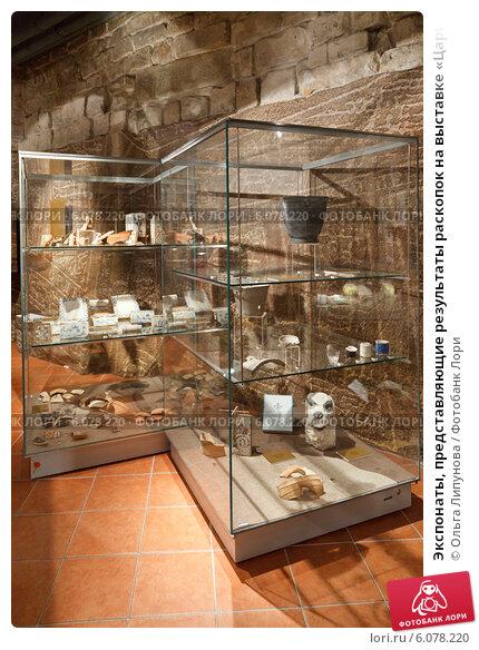 Выставка, царицынские, древности, археологические, памятники, начала, зал, музейный, витрина, раскопки