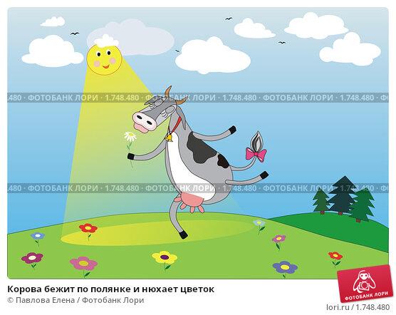 Сонник есть корову