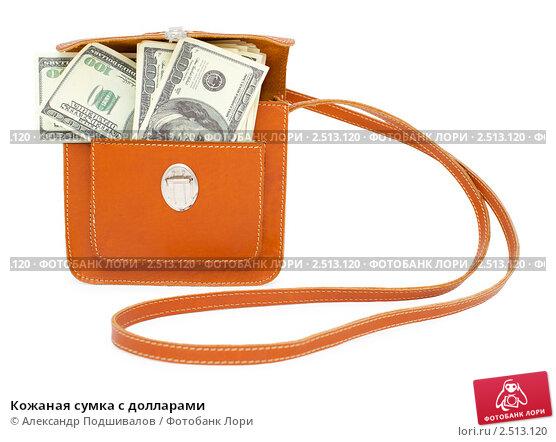 Кожаная сумка с долларами, фото 2513120.