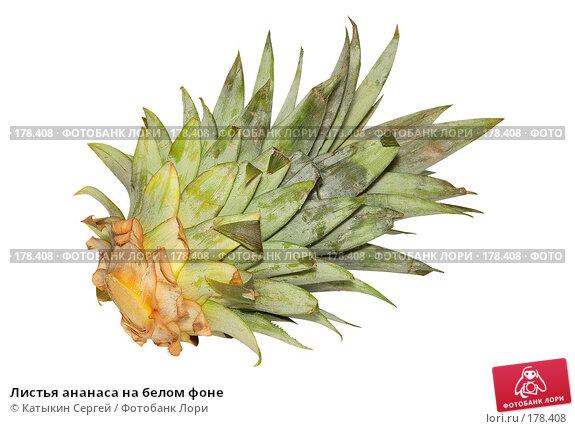 Как сделать листья к ананасу