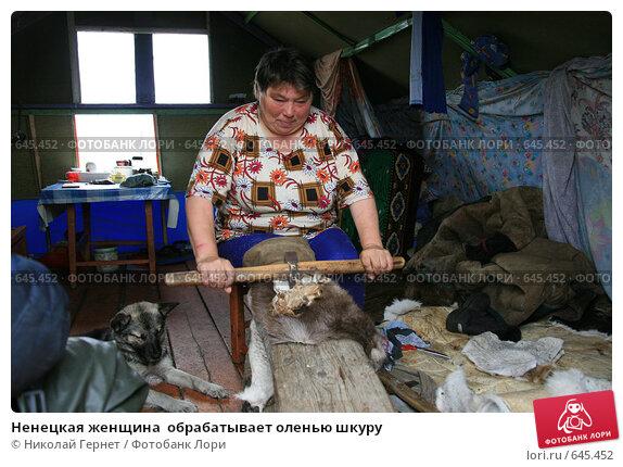 Ненецкая женщина обрабатывает оленью шкуру, фото 645452, снято 26...