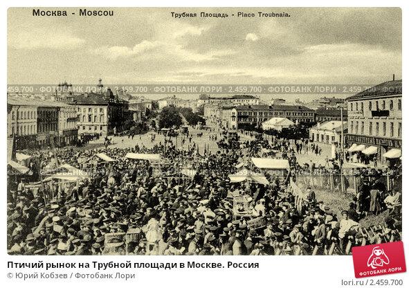 птичий рынок в москве видео