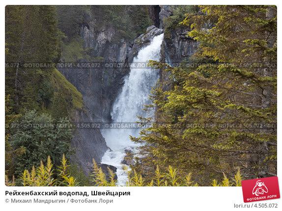 Прическа косичка водопад устройство