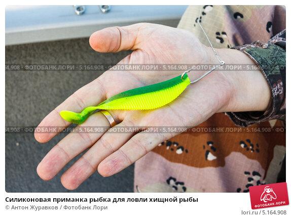 Как сделать приманку на рыбу в домашних условиях