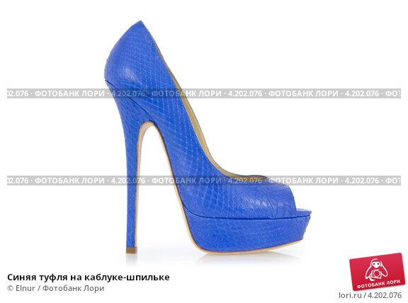 Синие Туфли На Каблуке Фото