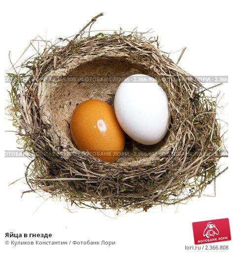Он пройдёт в самрпурском районе, где, как известно, находится птицефабрика степное гнездо