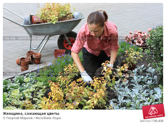 hozyayka-i-sadovnik
