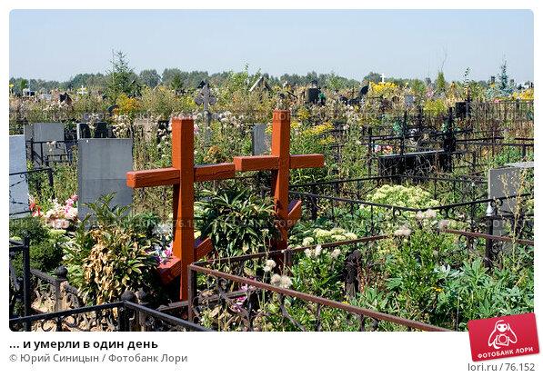 ... и умерли в один день, фото № 76152, снято 17 августа 2007 г. (c) Юрий Синицын / Фотобанк Лори