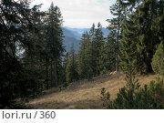 Купить «Баварские Альпы. Вид на горную гряду с лесистого склона.», фото № 360, снято 18 января 2018 г. (c) Павел Гаврилов / Фотобанк Лори