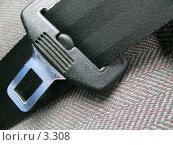 Купить «Внутри автомобиля. Ремень безопасности», эксклюзивное фото № 3308, снято 5 июля 2004 г. (c) Ирина Терентьева / Фотобанк Лори