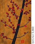 Купить «Красные ягоды, коллаж», иллюстрация № 3460 (c) Tamara Kulikova / Фотобанк Лори