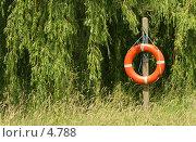Купить «Спасательный круг, на фоне ивы и травы», фото № 4788, снято 17 июня 2006 г. (c) Tamara Kulikova / Фотобанк Лори