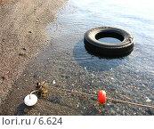 Купить «Шина в воде», фото № 6624, снято 14 июля 2006 г. (c) Маргарита Лир / Фотобанк Лори