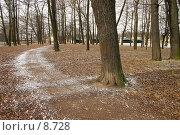 Купить «Осень в городском парке», фото № 8728, снято 20 апреля 2005 г. (c) Vladimir Fedoroff / Фотобанк Лори