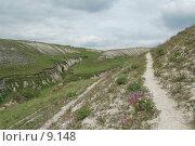 Купить «Донской  пейзаж», фото № 9148, снято 26 мая 2006 г. (c) Макс Тормышев / Фотобанк Лори