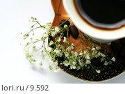 Купить «Кофейная чашка с кофе на белом», фото № 9592, снято 27 июня 2006 г. (c) Ольга Красавина / Фотобанк Лори