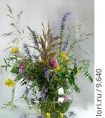 Купить «Лесные и полевые цветы и травы в стеклянной вазе», фото № 9640, снято 24 июля 2006 г. (c) Ольга Красавина / Фотобанк Лори