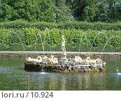 Купить «Фонтаны Петергофа», фото № 10924, снято 23 июля 2006 г. (c) Комиссарова Ольга / Фотобанк Лори