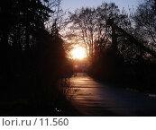 Купить «Закат на Воробьевых горах», фото № 11560, снято 7 мая 2006 г. (c) Комиссарова Ольга / Фотобанк Лори