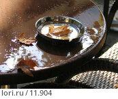 Купить «Осень в пепельнице», фото № 11904, снято 24 сентября 2006 г. (c) Юрий Синицын / Фотобанк Лори