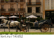 Купить «Конная повозка на улице Валенсии», фото № 14652, снято 20 июня 2006 г. (c) Старкова Ольга / Фотобанк Лори
