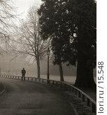 Купить «Человек, идущий по дорожке парка, сильный туман», фото № 15548, снято 19 декабря 2006 г. (c) Tamara Kulikova / Фотобанк Лори