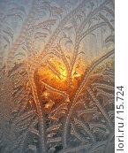 Праздники, фото № 15724, снято 18 января 2006 г. (c) Дмитрий Алимпиев / Фотобанк Лори