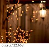 Размытые фонарь и гирлянда у входа в кафе. Стоковое фото, фотограф Давид Мзареулян / Фотобанк Лори