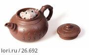 Купить «Короткошерстная крыса сфинкс спряталась в глиняном заварном чайнике с иероглифами», фото № 26692, снято 18 марта 2007 г. (c) Сергей Лешков / Фотобанк Лори