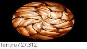 Купить «Удивительная природа. Абстрактное изображение природного объекта из пластин и чешуи, под которыми надежно укрыты семена ели», иллюстрация № 27312 (c) Анатолий Теребенин / Фотобанк Лори