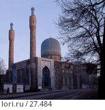 Купить «Соборная мечеть в Санкт-Петербурге», фото № 27484, снято 20 ноября 2018 г. (c) Светлана Щекина / Фотобанк Лори