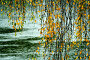 Дождливый мотив, фото № 28524, снято 29 октября 2016 г. (c) Aleksander Kaasik / Фотобанк Лори