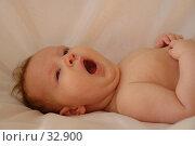 Купить «Зевает», фото № 32900, снято 11 января 2007 г. (c) Гладских Татьяна / Фотобанк Лори