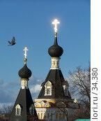 Купить «Дмитров. Голубь над дмитровским кремлем», фото № 34380, снято 18 февраля 2005 г. (c) Julia Nelson / Фотобанк Лори