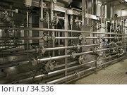 Цех пивного завода. Стоковое фото, фотограф Федюнин Александр / Фотобанк Лори