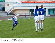 Купить «Футбол. Штрафной удар», фото № 35836, снято 25 апреля 2007 г. (c) 1Andrey Милкин / Фотобанк Лори