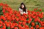 Девушка в красных тюльпанах, фото № 36428, снято 27 марта 2017 г. (c) SummeRain / Фотобанк Лори