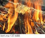 Купить «Пламя», фото № 37688, снято 1 мая 2007 г. (c) Илья Садовский / Фотобанк Лори