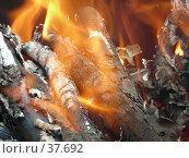 Купить «Костер», фото № 37692, снято 1 мая 2007 г. (c) Илья Садовский / Фотобанк Лори