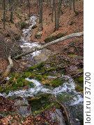 Приток реки Улу-Узень. Стоковое фото, фотограф Михаил Баевский / Фотобанк Лори