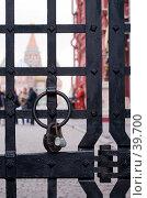 Купить «Петля на воротах перед Красной площадью», фото № 39700, снято 25 апреля 2007 г. (c) Юрий Синицын / Фотобанк Лори