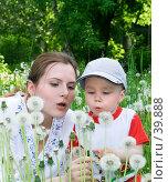 Купить «Мама, сын и одуванчики», фото № 39888, снято 7 июня 2006 г. (c) Андрей Щекалев (AndreyPS) / Фотобанк Лори