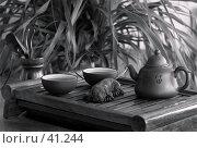 Купить «Китайская чайная церемония», эксклюзивное фото № 41244, снято 20 января 2007 г. (c) Татьяна Белова / Фотобанк Лори
