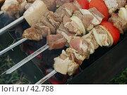 Купить «Шашлык», фото № 42788, снято 12 мая 2007 г. (c) Golden_Tulip / Фотобанк Лори