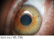 Купить «Глаз человека. Макросъемка.», фото № 45796, снято 3 февраля 2007 г. (c) Крупнов Денис / Фотобанк Лори